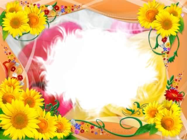 กรอบรูปดอกไม้สวยๆ ดอกกุหลาบ ดอกทานตะวัน